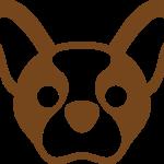 Redazione Mondo Bulldog